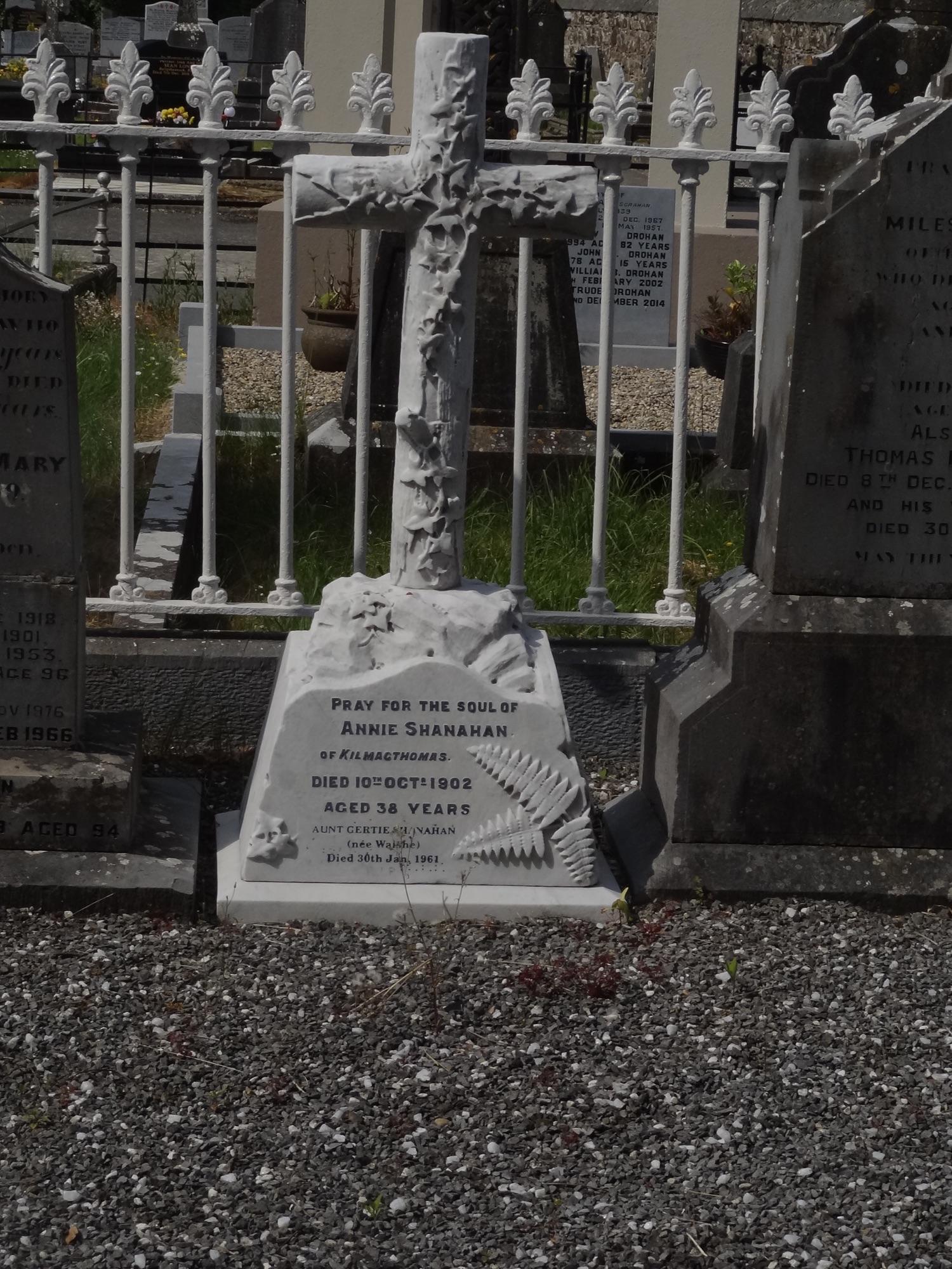 WA-ASNT-0435 | Historic Graves